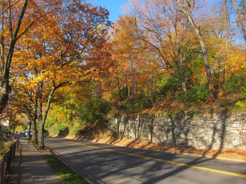 Fall Colors - College Ave., Easton, PA