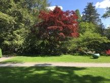 VVG-14-05:16 Trees