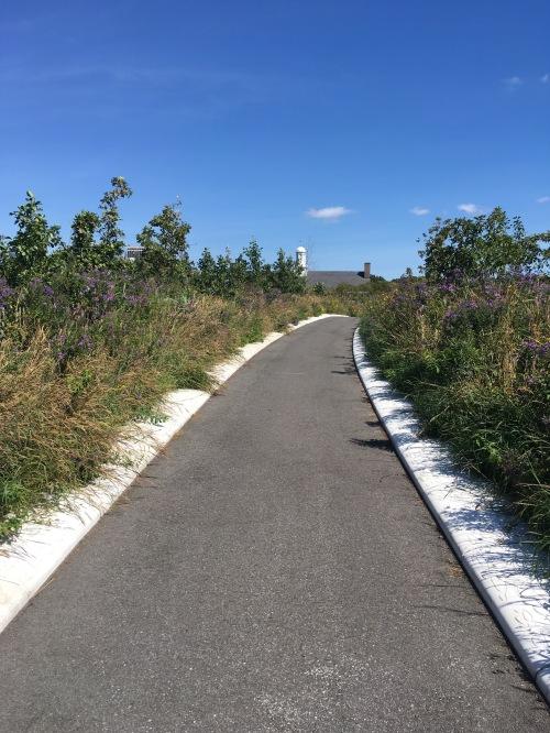 gi-path