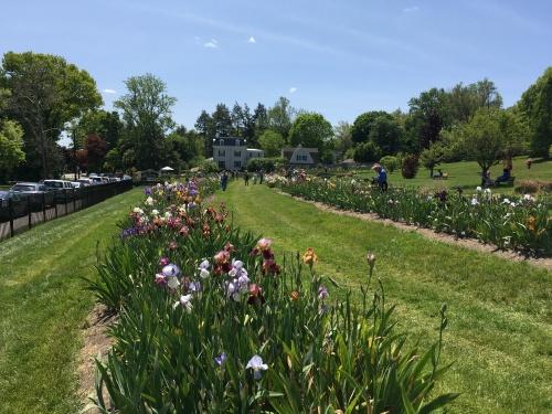 garden-montclair-njjpg