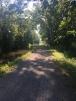 Tow Path shade.2JPG
