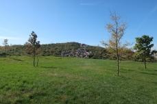 GI Outlook Hill