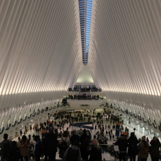 Holiday Season Oculus