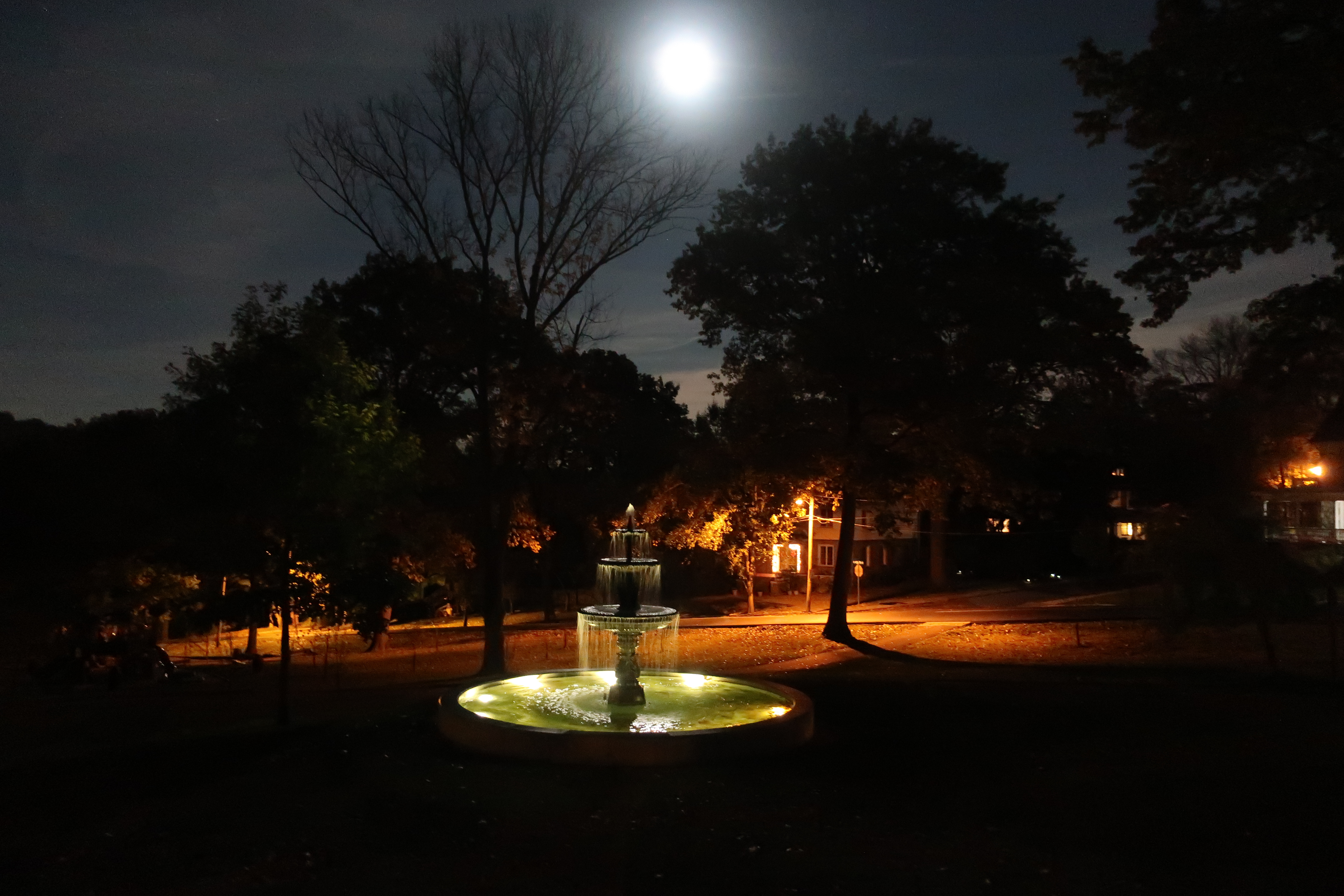 Nevin Park 110317