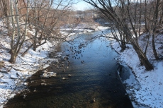 Bushkill Creek 06JAN18