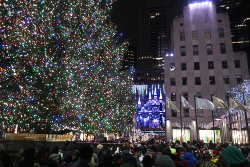 Rock Ctr Tree and Saks G9X