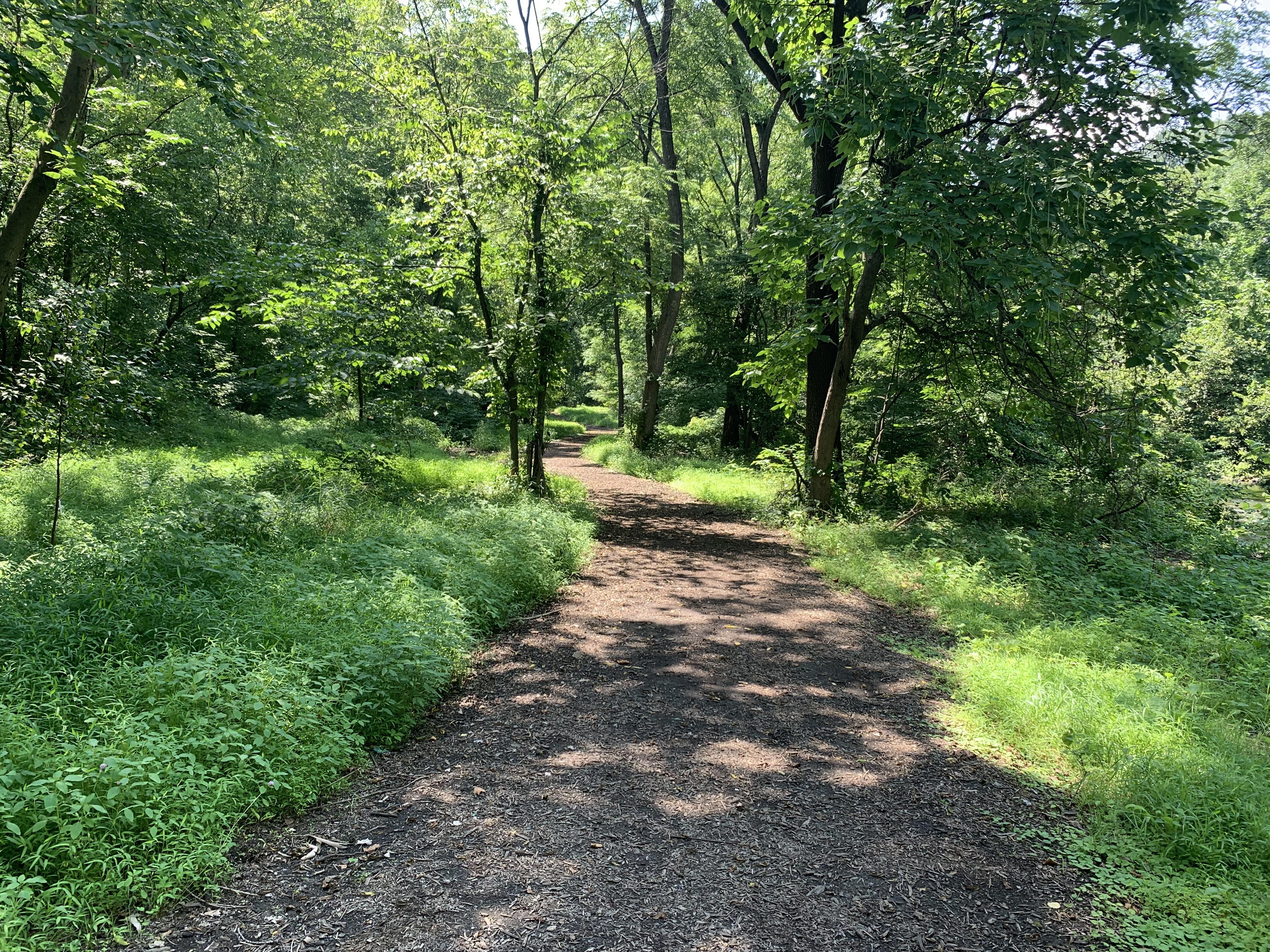Nature Trail KSAT